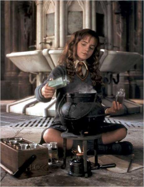 Harry Potter et la chambre des secrets TrueFrencH AC-3 PAL DVD-R RLS