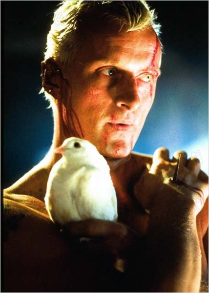 Blade Runner : photo Ridley Scott, Rutger Hauer