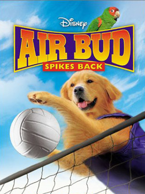 Airbud 5 : superstar