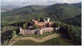Des vignes et des hommes - Italie : La noblesse des vins toscans