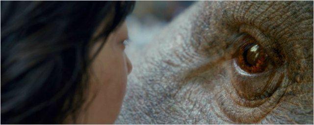Okja, le retour d'Orange Is the New Black, une série avec Naomi Watts… c'est sur Netflix en juin