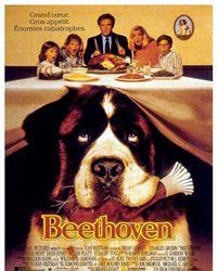 Affiche du film Beethoven