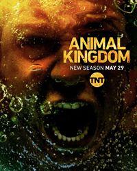 Affiche de la série Animal Kingdom