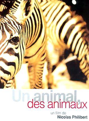 Bande-annonce Un animal, des animaux