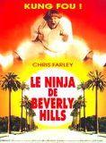 Bande-annonce Le Ninja de Beverly Hills