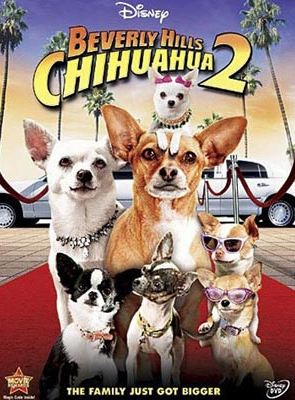 Bande-annonce Le Chihuahua de Beverly Hills 2