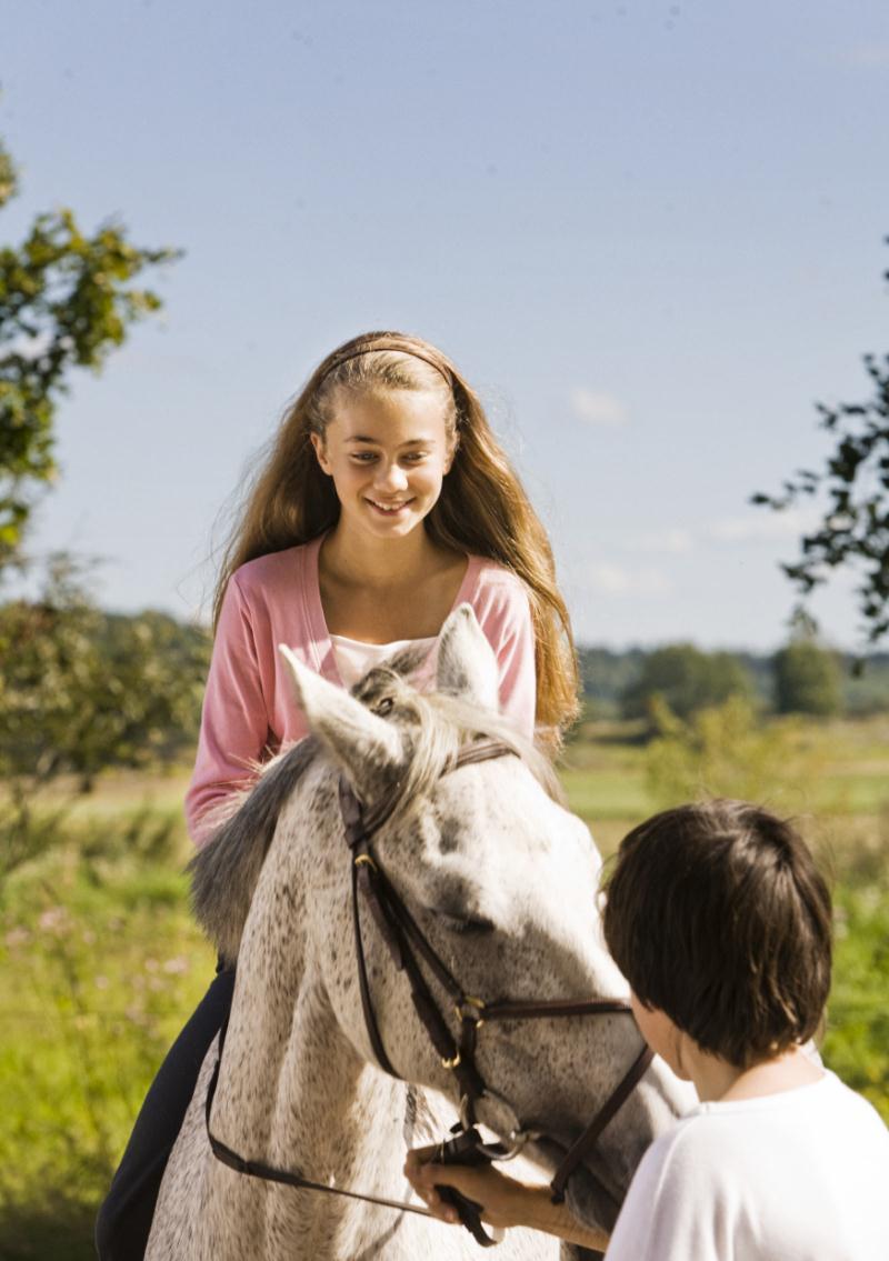 Photo du film Le Cheval de Klara - Photo 1 sur 4 - AlloCiné