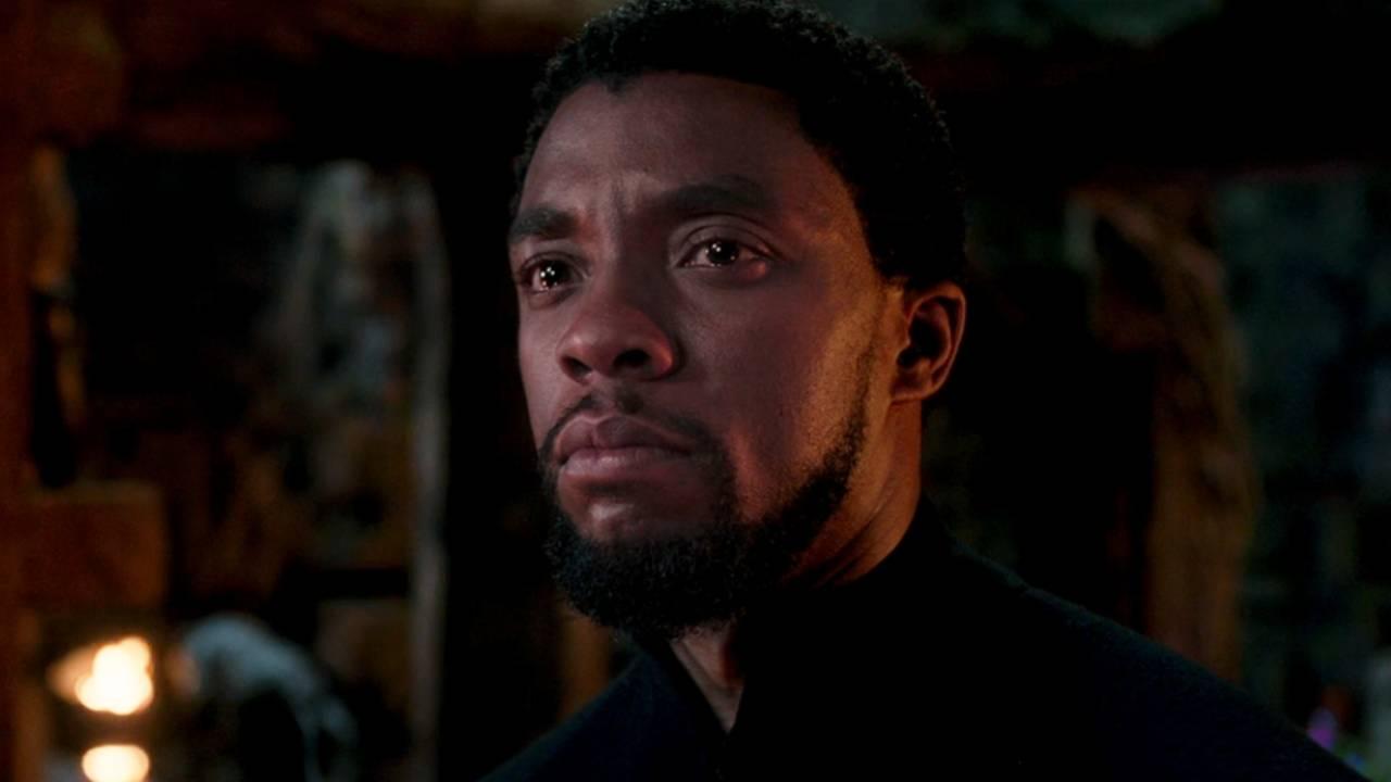 Black Panther : avez-vous repéré ce clin d'œil à Captain America 3 ? – Actus Ciné