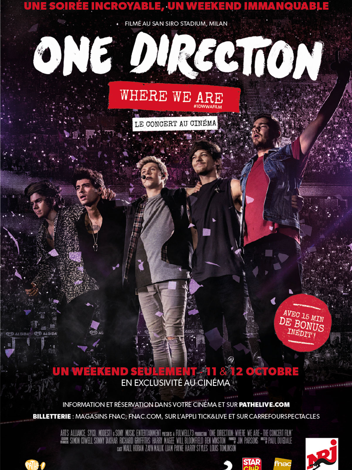Télécharger One Direction: Where We Are – The Concert Film Complet DVDRIP Uptobox