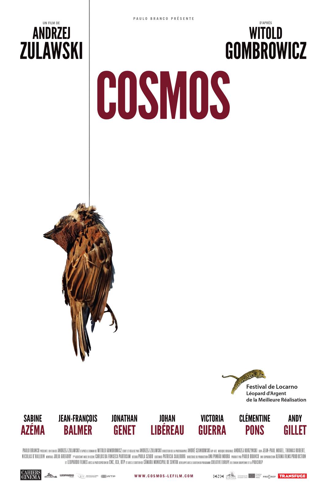 Cosmos ddl