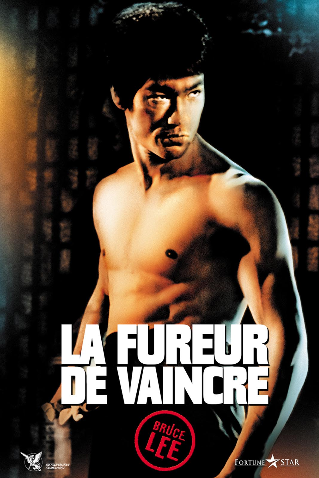 La Fureur De Vaincre en Streaming