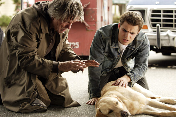 Fallen : Photo Paul Wesley, Tom Skerritt
