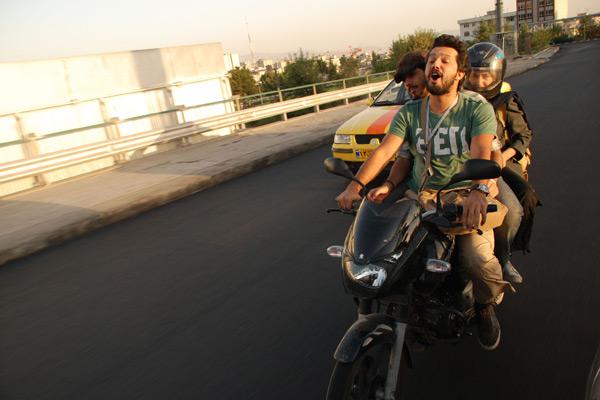 Les Chats persans : Photo Bahman Ghobadi
