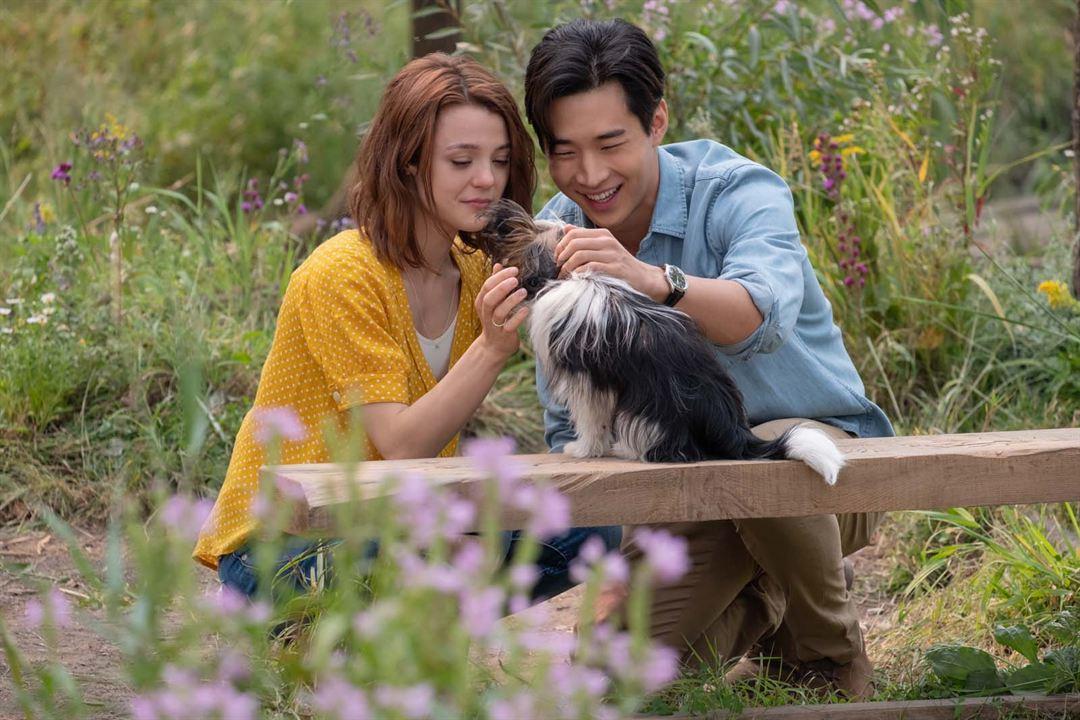 Mes autres vies de chien: Henry Lau, Kathryn Prescott